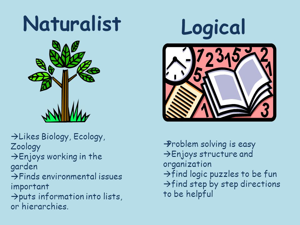 Naturalist Logical  Likes Biology, Ecology, Zoology  Enjoys working in the garden  Finds environmental issues important  puts information into lists, or hierarchies.
