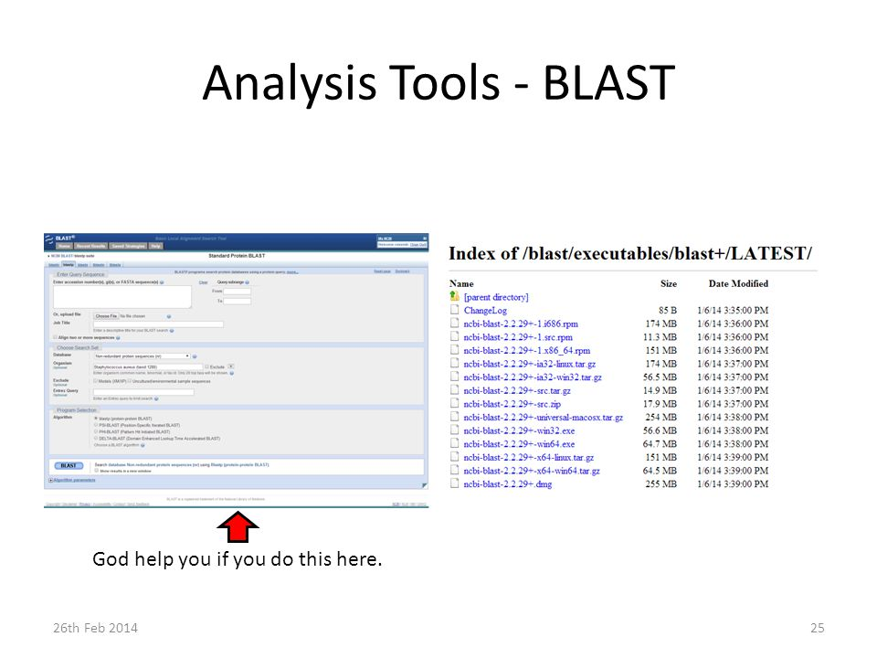 Analysis Tools - BLAST 26th Feb 201425 God help you if you do this here.
