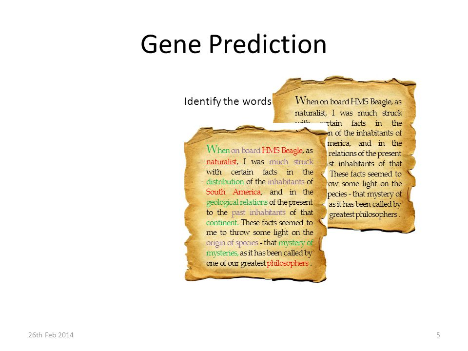 Gene Prediction W hen on board HMS Beagle, as naturalist, I was much struck with certain facts in the distribution of the inhabitants of South America, and in the geological relations of the present to the past inhabitants of that continent.