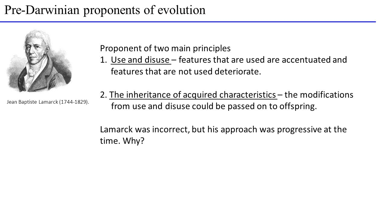 Jean Baptiste Lamarck (1744-1829). Proponent of two main principles 1.Use and disuse – features that are used are accentuated and features that are no
