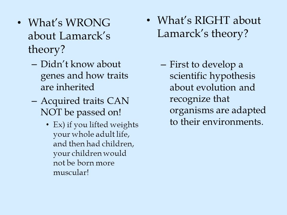 What's RIGHT about Lamarck's theory? – First to develop a scientific hypothesis about evolution and recognize that organisms are adapted to their envi
