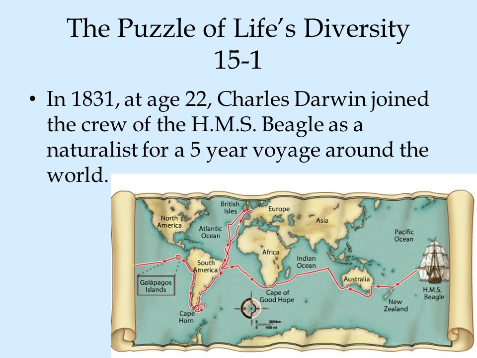 The Puzzle of Life's Diversity 15-1 In 1831, at age 22, Charles Darwin joined the crew of the H.M.S. Beagle as a naturalist for a 5 year voyage around