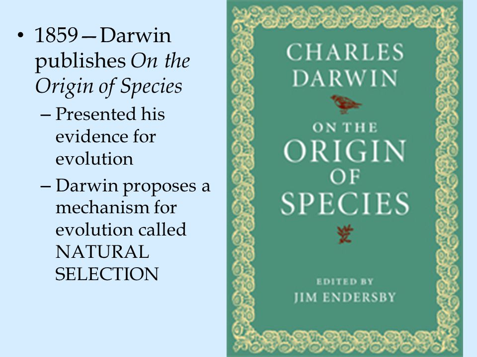 1859—Darwin publishes On the Origin of Species – Presented his evidence for evolution – Darwin proposes a mechanism for evolution called NATURAL SELEC