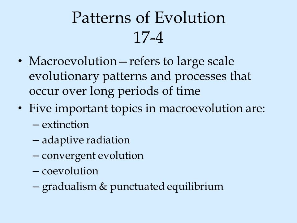Patterns of Evolution 17-4 Macroevolution—refers to large scale evolutionary patterns and processes that occur over long periods of time Five importan