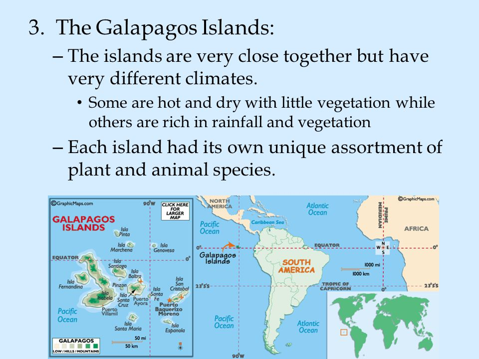 3. The Galapagos Islands: – The islands are very close together but have very different climates. Some are hot and dry with little vegetation while ot