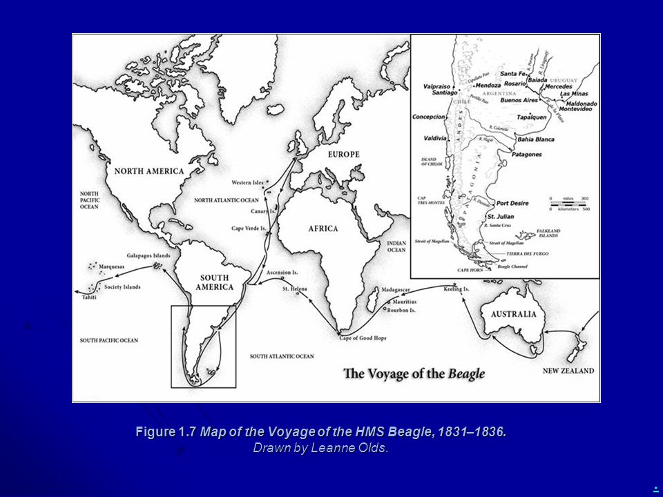 . Figure 1.7 Map of the Voyage of the HMS Beagle, 1831–1836. Drawn by Leanne Olds.