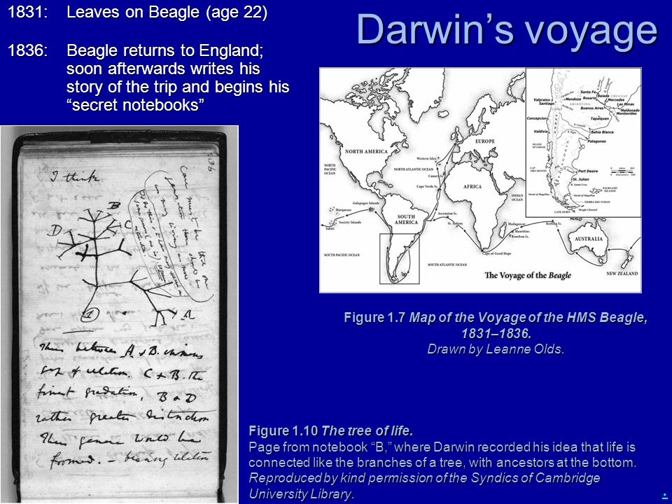 ". Darwin's voyage Figure 1.7 Map of the Voyage of the HMS Beagle, 1831–1836. Drawn by Leanne Olds. Figure 1.10 The tree of life. Page from notebook ""B"