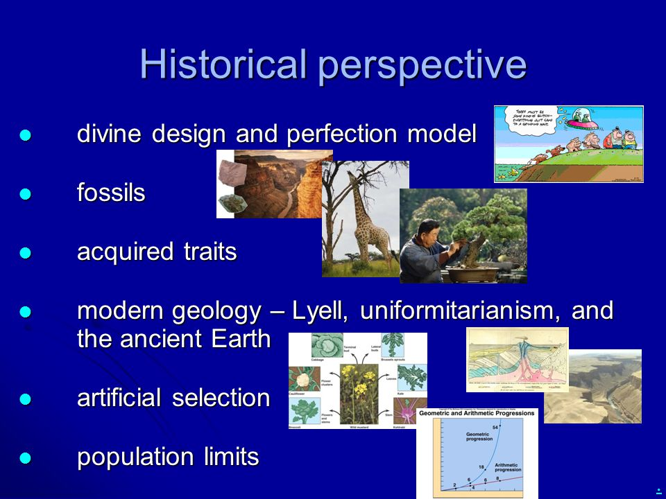 . Historical perspective divine design and perfection model divine design and perfection model fossils fossils acquired traits acquired traits modern
