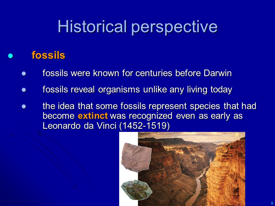 . Historical perspective fossils fossils fossils were known for centuries before Darwin fossils were known for centuries before Darwin fossils reveal