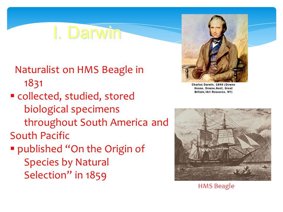 Charles Darwin British naturalist 1809-1882 Founder of modern evolutionary theory