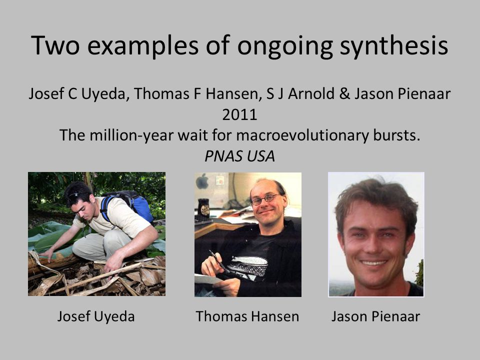 Two examples of ongoing synthesis Josef C Uyeda, Thomas F Hansen, S J Arnold & Jason Pienaar 2011 The million-year wait for macroevolutionary bursts.
