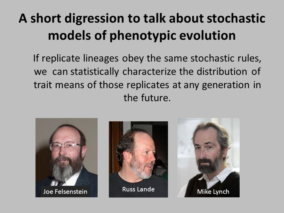 A short digression to talk about stochastic models of phenotypic evolution If replicate lineages obey the same stochastic rules, we can statistically characterize the distribution of trait means of those replicates at any generation in the future.