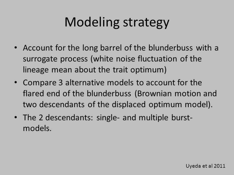 Modeling strategy Account for the long barrel of the blunderbuss with a surrogate process (white noise fluctuation of the lineage mean about the trait optimum) Compare 3 alternative models to account for the flared end of the blunderbuss (Brownian motion and two descendants of the displaced optimum model).