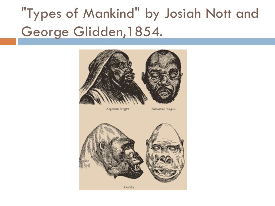 Types of Mankind by Josiah Nott and George Glidden,1854.