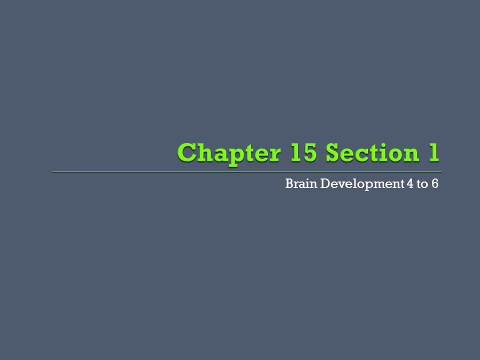 Brain Development 4 to 6