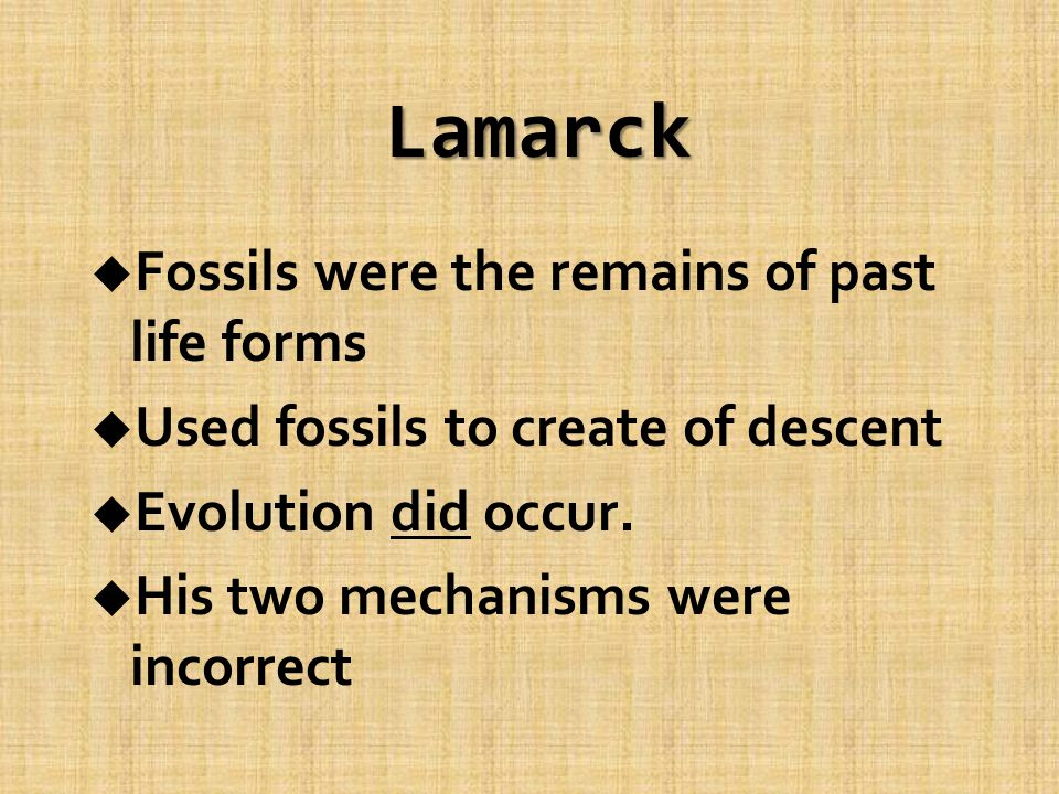 Lamarck u Fossils were the remains of past life forms u Used fossils to create of descent u Evolution did occur.