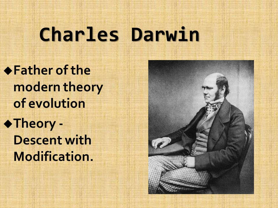 Charles Darwin u Father of the modern theory of evolution u Theory - Descent with Modification.