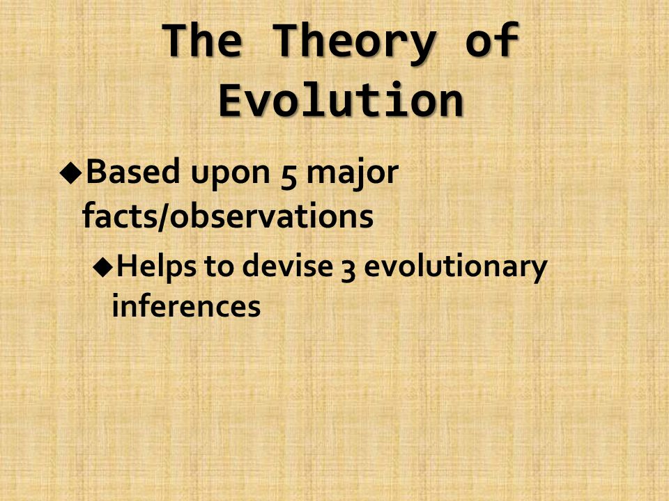 The Theory of Evolution u Based upon 5 major facts/observations u Helps to devise 3 evolutionary inferences