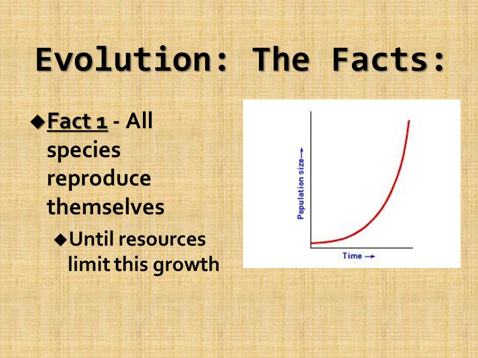 Evolution: The Facts: u Fact 1 u Fact 1 - All species reproduce themselves u Until resources limit this growth