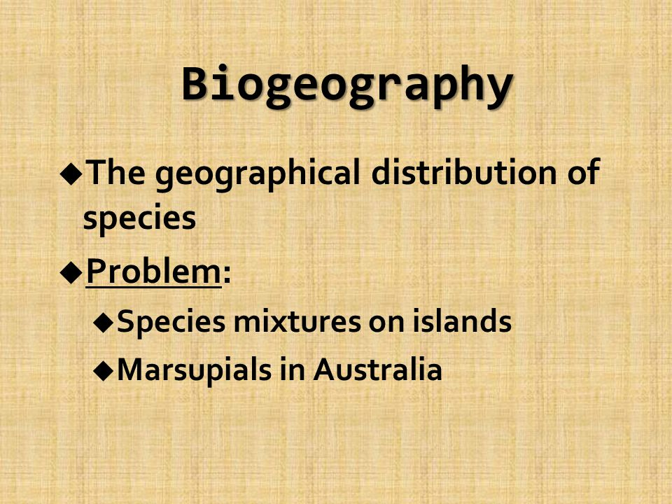Biogeography u The geographical distribution of species u Problem: u Species mixtures on islands u Marsupials in Australia