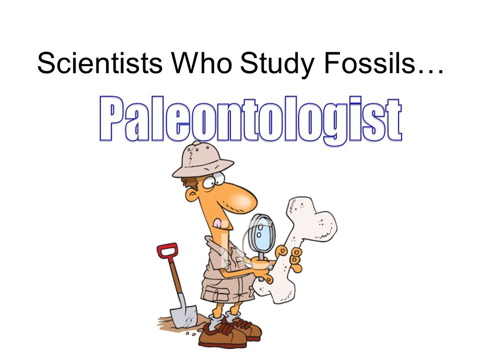 Scientists Who Study Fossils…