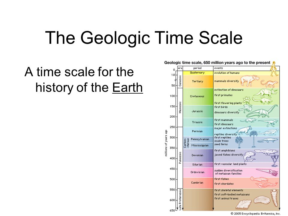 The Geologic Time Scale A time scale for the history of the Earth
