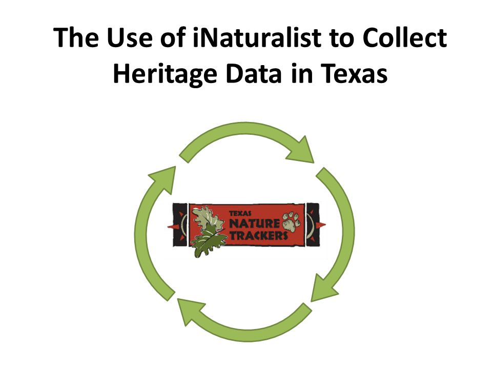 The Use of iNaturalist to Collect Heritage Data in Texas