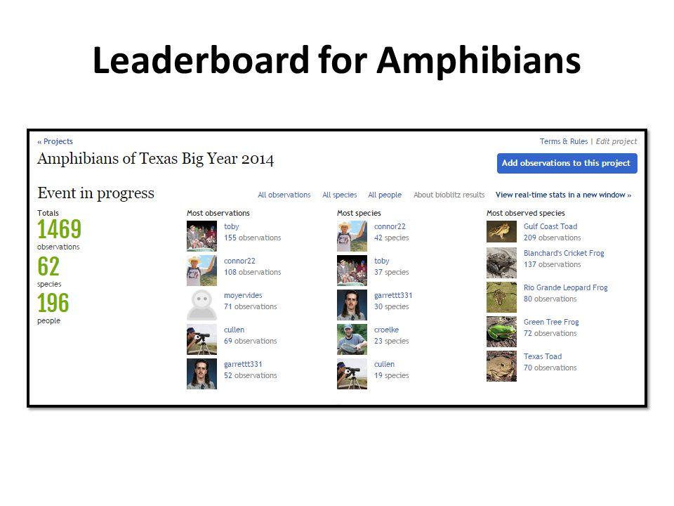 Leaderboard for Amphibians