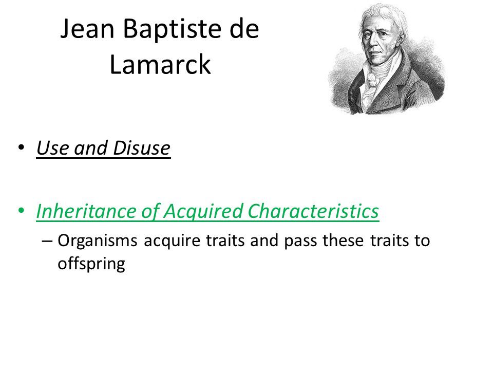 Jean Baptiste de Lamarck Use and Disuse Inheritance of Acquired Characteristics – Organisms acquire traits and pass these traits to offspring