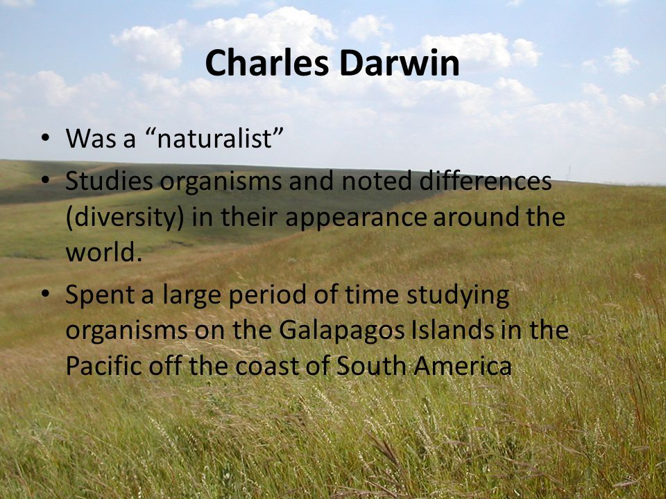 Was a naturalist Studies organisms and noted differences (diversity) in their appearance around the world.