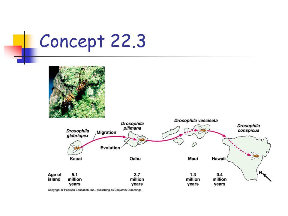Concept 22.3