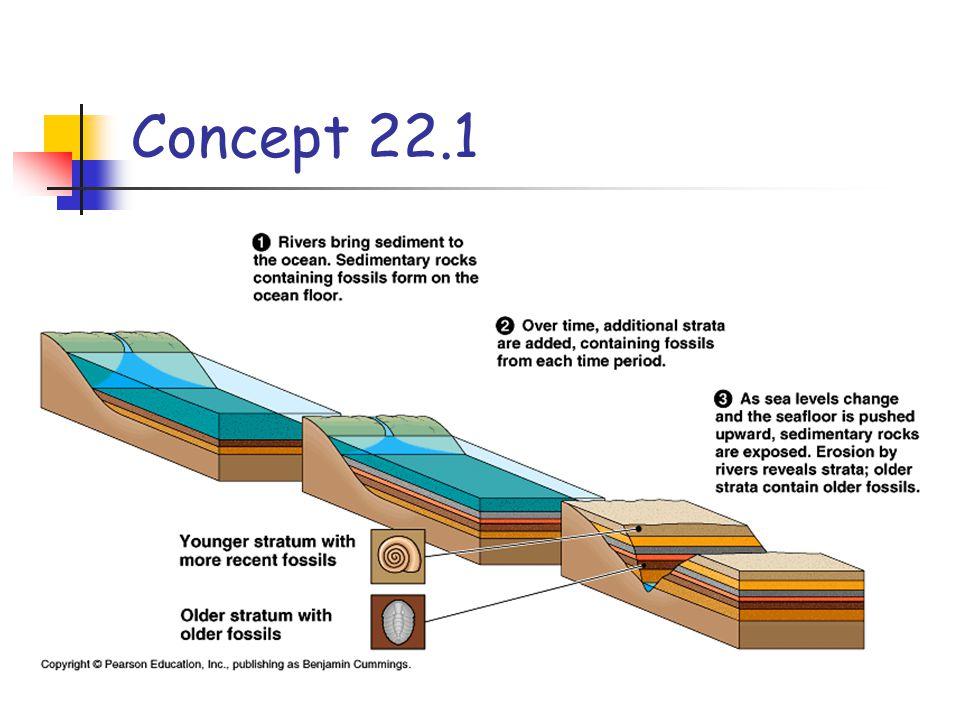 Concept 22.1