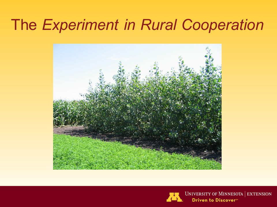 The Experiment in Rural Cooperation