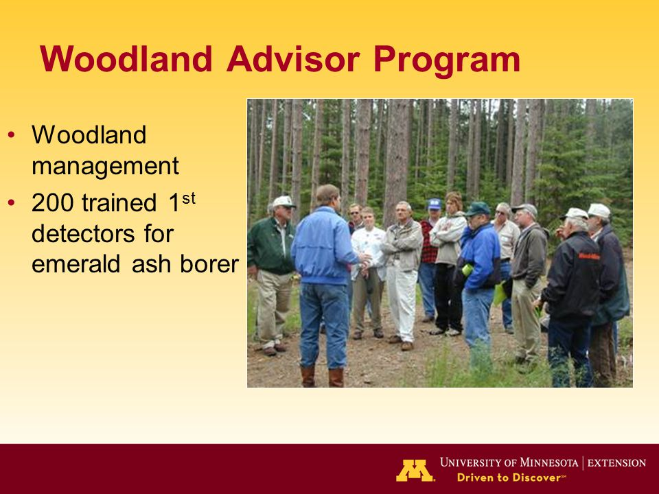Woodland Advisor Program Woodland management 200 trained 1 st detectors for emerald ash borer