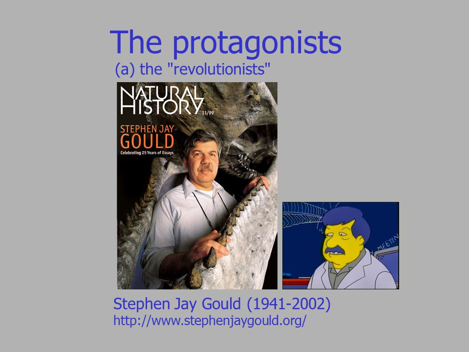 The protagonists (a) the revolutionists Stephen Jay Gould (1941-2002) http://www.stephenjaygould.org/