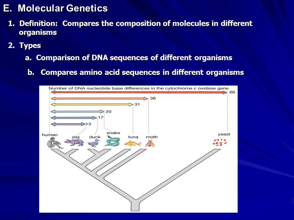 E. Molecular Genetics 1.