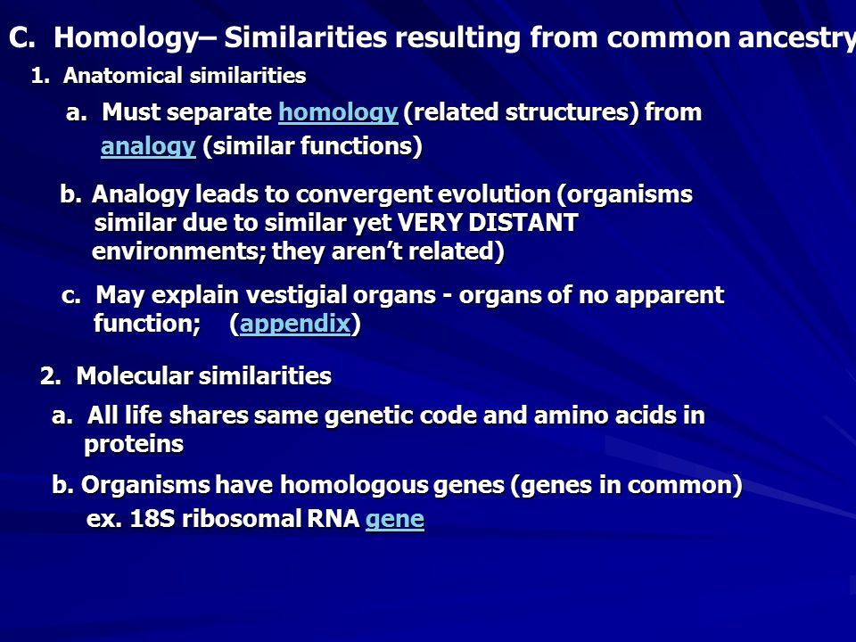 C. Homology– Similarities resulting from common ancestry 1.