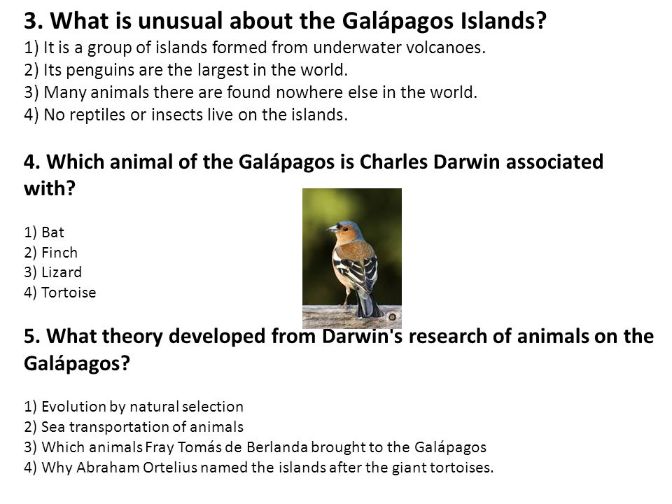 3.What is unusual about the Galápagos Islands.