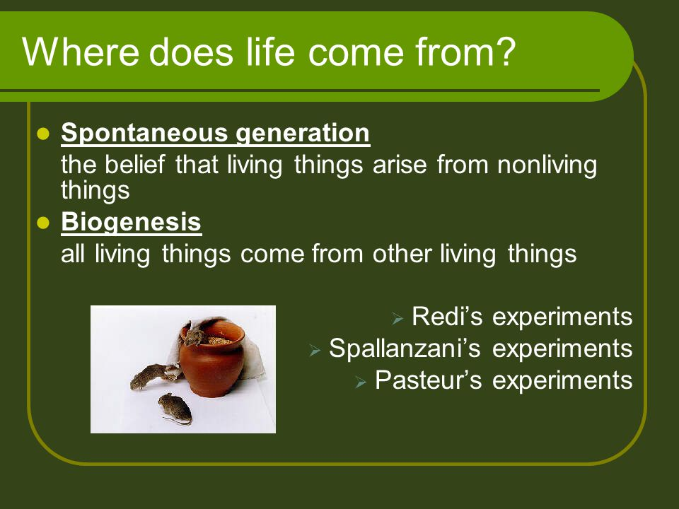 Where does life come from.