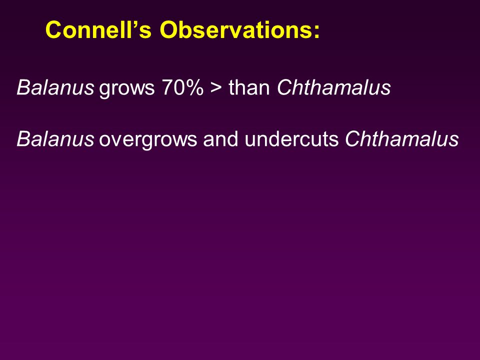 Balanus grows 70% > than Chthamalus Balanus overgrows and undercuts Chthamalus Connell's Observations: