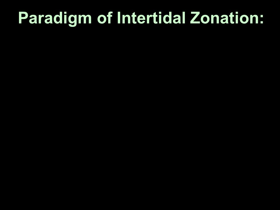 Paradigm of Intertidal Zonation: