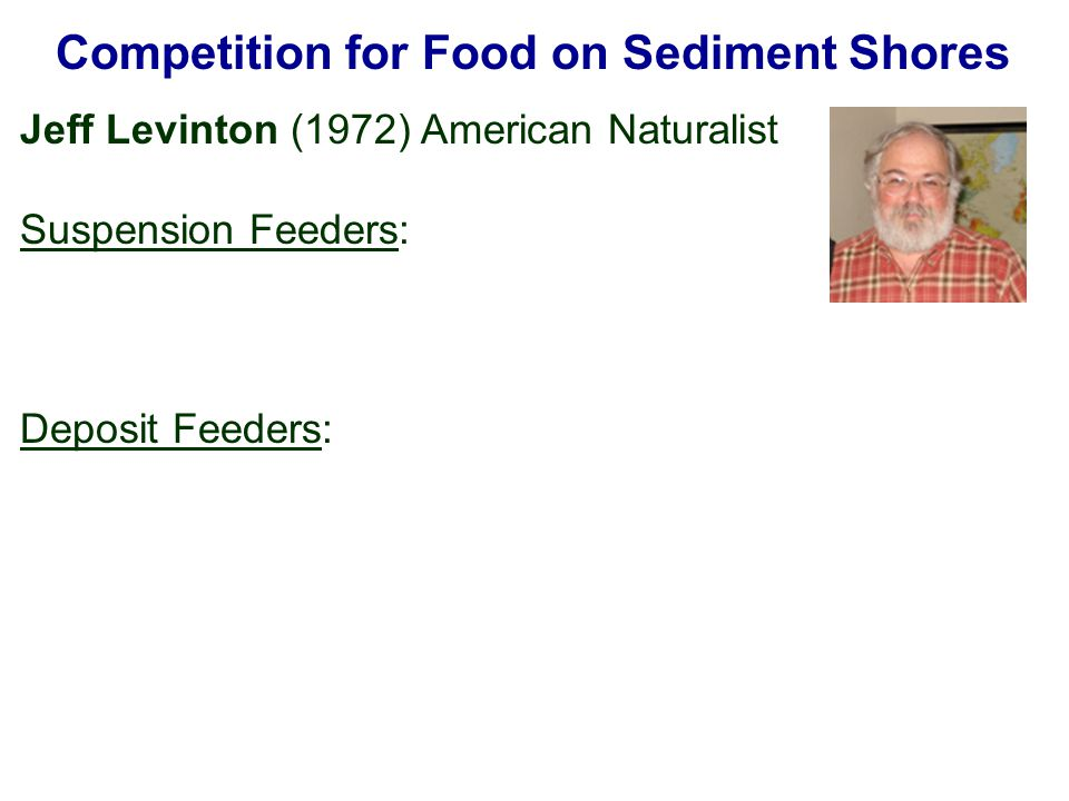 Competition for Food on Sediment Shores Jeff Levinton (1972) American Naturalist Suspension Feeders: Deposit Feeders: