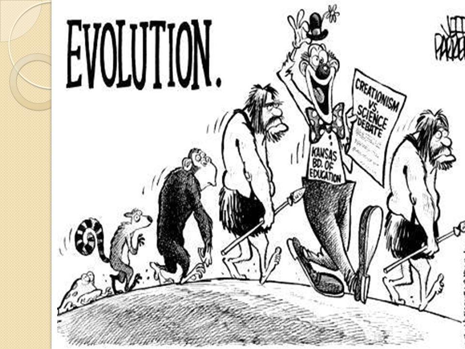 Evolution Chapter 16