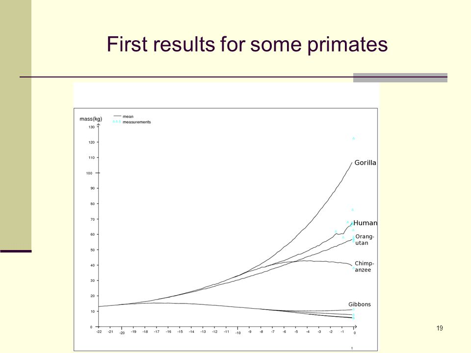 First results for some primates 19