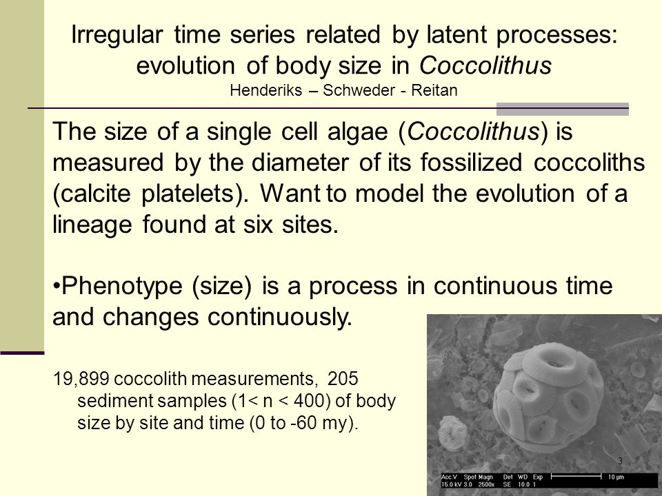 Our data – Coccolith size measurements 205 Sample mean log coccolith size (1 < n < 400) by time and site.