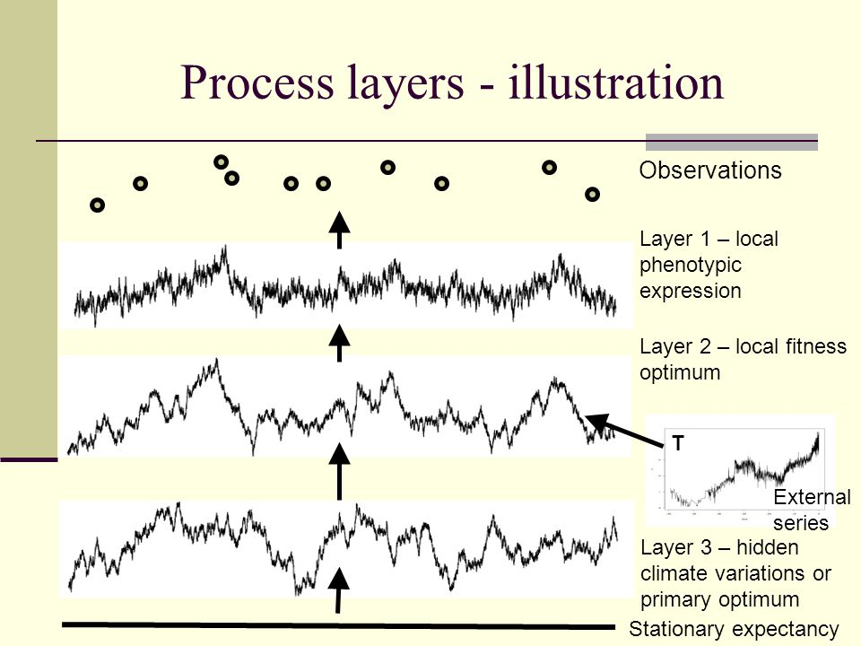 Process layers - illustration Layer 1 – local phenotypic expression External series Stationary expectancy Observations T Layer 2 – local fitness optimum Layer 3 – hidden climate variations or primary optimum