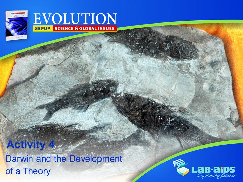 Activity 4: Darwin and the Development of a Theory Activity 4: Darwin and the Development of a Theory  biological evolution  evidence  evolution  natural selection  sexual selection  theory Key Vocabulary