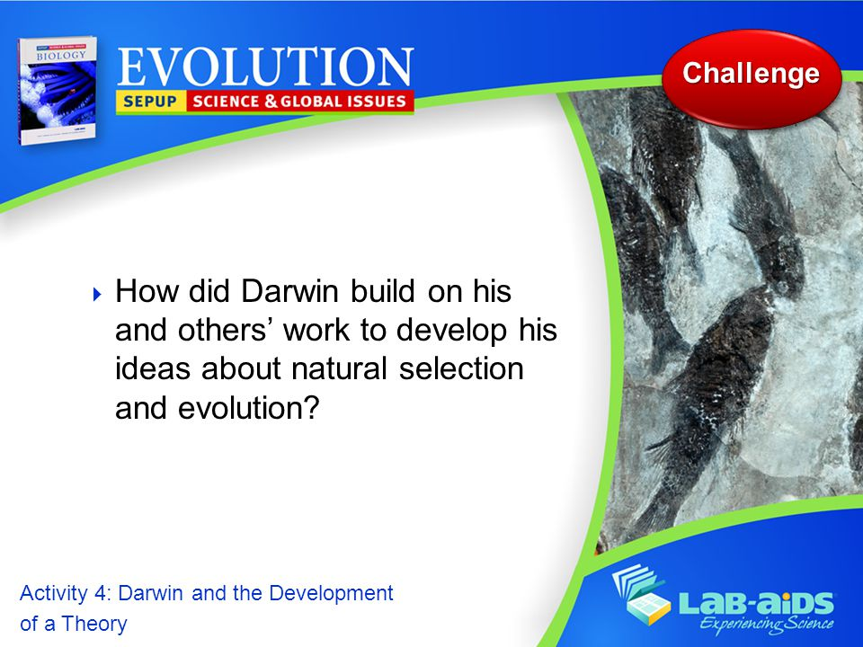 Activity 4: Darwin and the Development of a Theory Activity 4: Darwin and the Development of a Theory  How did Darwin build on his and others' work to develop his ideas about natural selection and evolution.