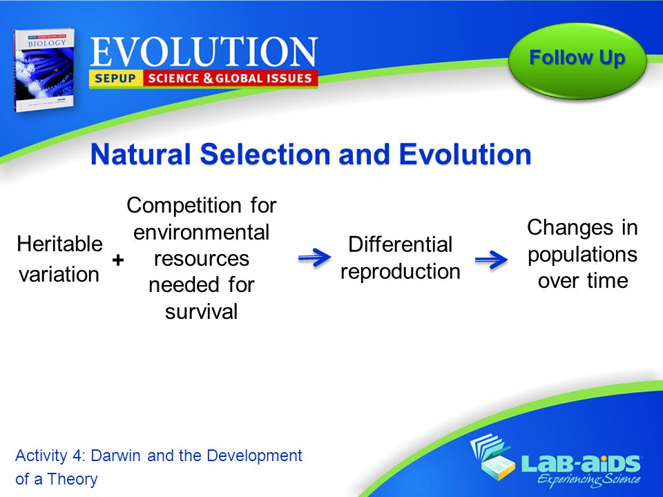 Activity 4: Darwin and the Development of a Theory Activity 4: Darwin and the Development of a Theory  How did Darwin build on his and others' work to develop his ideas about natural selection and evolution.