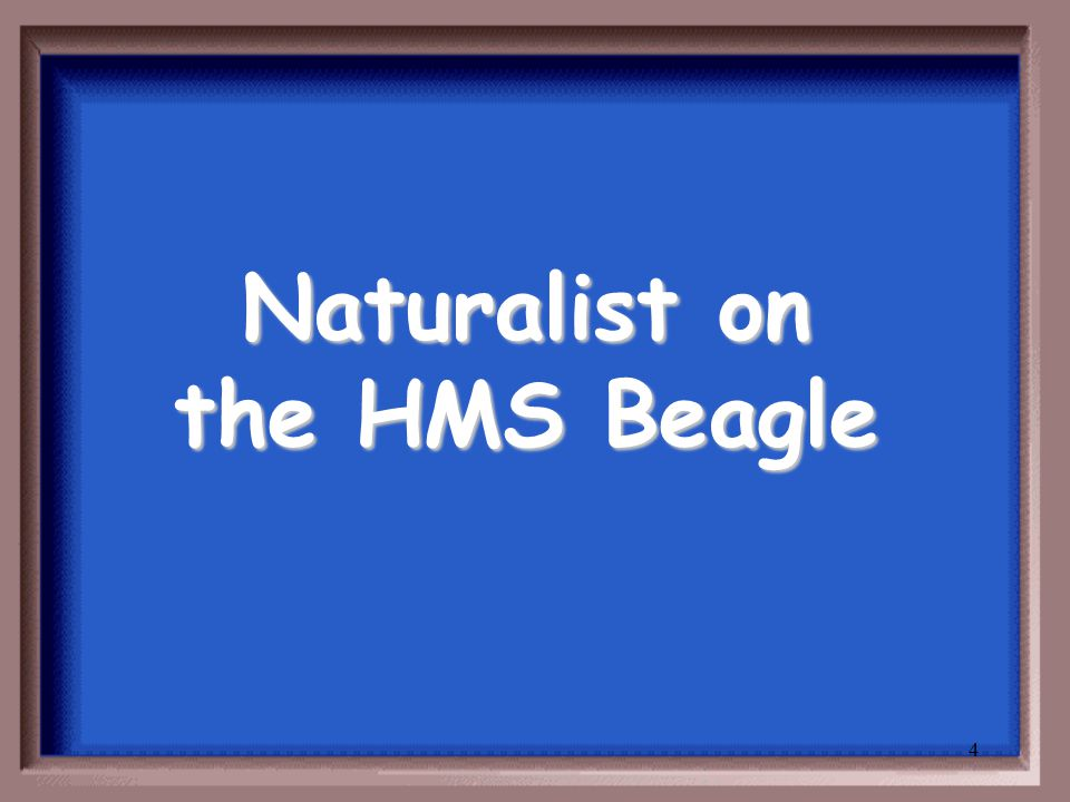 4 Naturalist on the HMS Beagle